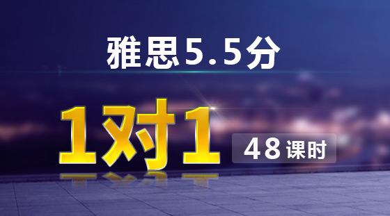 雅思5.5分 VIP 1对1课程【48课时】