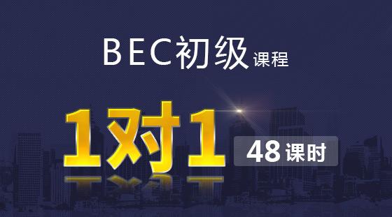 BEC初级VIP 1对1课程【48课时】