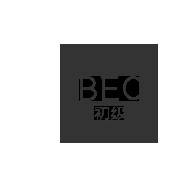 BEC初级 1对1课程【160课时】