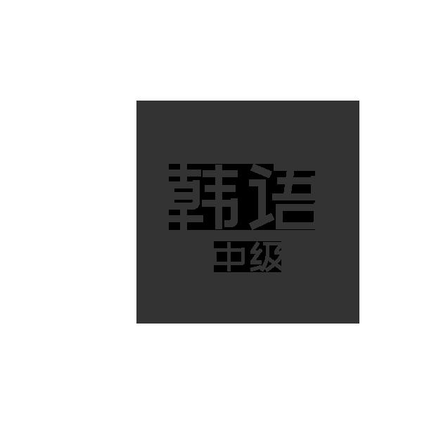 韩语中级 1对1课程【96课时】